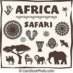 アフリカ, セット, アイコン, サファリ, 要素