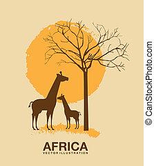 アフリカ, デザイン