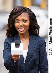 アフリカ, ニュースリポーター, インタビュー, ∥で∥, マイクロフォン