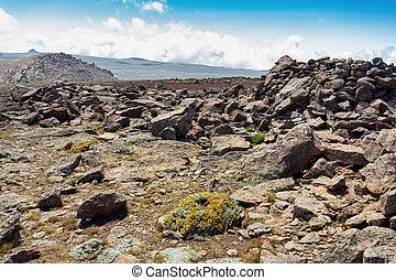 アフリカ, ベール, エチオピア, 山, 風景, エチオピア