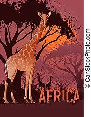 アフリカ, 旅行, ポスター