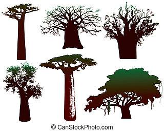アフリカ, 様々, ベクトル, -, 木