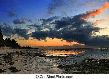 アフリカ, 海岸