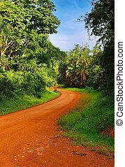 アフリカ, 道
