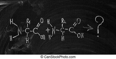 アミノ, 黒板, 書かれた, acid's, 方式