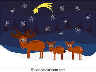アメリカヘラジカ, クリスマス