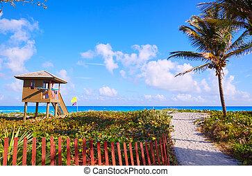 アメリカ, フロリダ, delray, del, 浜, 光線