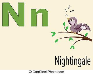 アルファベット, 動物, n