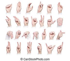 ∥, アルファベット, 形作られる, によって, 手話