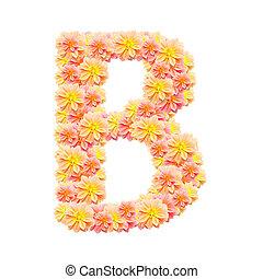 アルファベット, 白, 隔離された, b