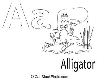アルファベット, 着色, 子供