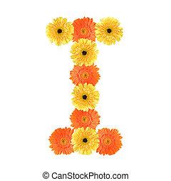 アルファベット, 花, 作成される