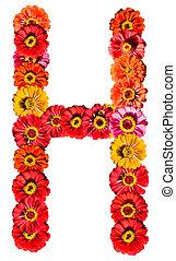 アルファベット, 花, -, h