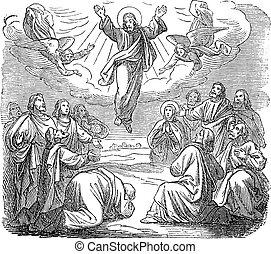 イエス・キリスト, ∥あるいは∥, 彫版, 宗教, 取られる, 聖書, 図画, 骨董品, 復活させられた, の上, 聖書, 新約聖書, heaven., ゴスペル, ルーク, 型, 24, 新しい