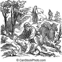 イエス・キリスト, 聖書, 図画, 聖書, 新約聖書, ルーク, 物語, よい, 型, 10, 新しい, samaritan., 寓話