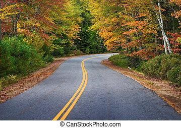 イギリス\, 木, 秋, 巻き取り, によって, 新しい, 道