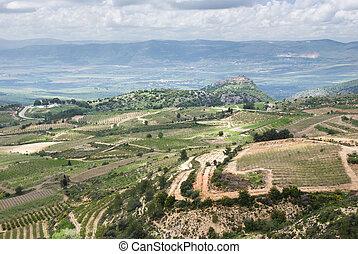 イスラエル, 北, od, -, 高さ, galilee, golan, 光景