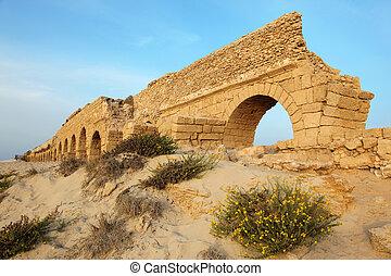 イスラエル, 古代, 古い, クラシック, 水路, -, 地中海, ceasarea, ローマ人, 日没, 海 海岸