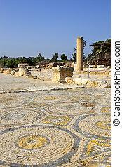 イスラエル, 国民, zippori, 公園, 考古学的, galilee, 掘削