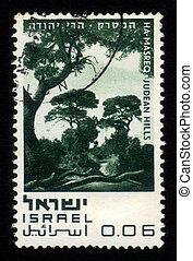 イスラエル, 自然, ha-masreq, 丘, -, 予備, judean
