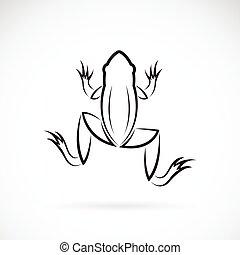 イメージ, ベクトル, カエル