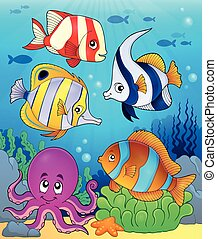 イメージ, 主題, 珊瑚, 5, 動物群