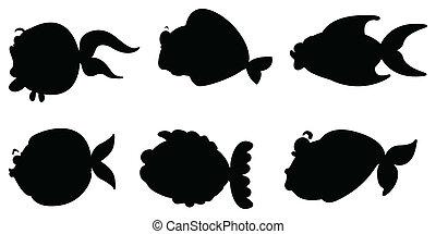 イメージ, 別, 黒い海, 生きもの