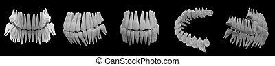 イメージ, 隔離された, 黒, 歯, 白, 3d