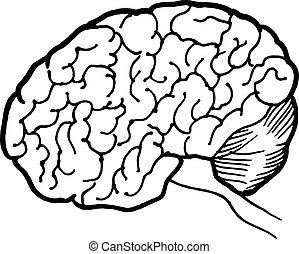 イラスト, ∥あるいは∥, 手, logotype, 旗, 引かれる, 人間の頭脳, 線である