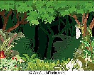 イラスト, の, 森林, 背景