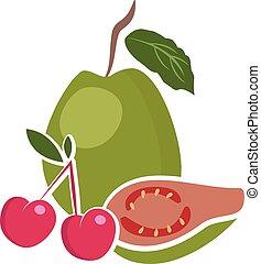イラスト, の, fruits., ベクトル