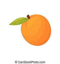 イラスト, バックグラウンド。, ベクトル, オレンジ, 白, そっくりそのまま, closeup.