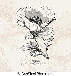 イラスト, ベクトル, 花, フルである