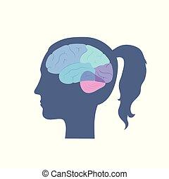 イラスト, 人間の解剖学, ベクトル, 脳