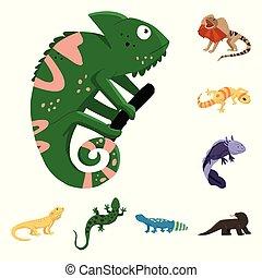 イラスト, 動物 セット, 自然, ベクトル, illustration., 株, は虫類, シンボル。