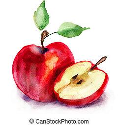イラスト, 水彩画, 定型, アップル