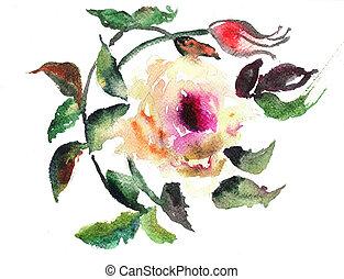 イラスト, 水彩画, 花, 定型, バラ