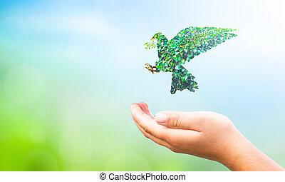 インターナショナル, 葉, 平和, 日, 届く, concept:, 鳩