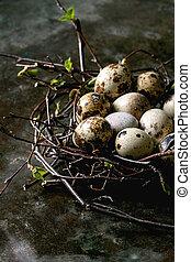 イースター, ウズラ, 卵, 巣