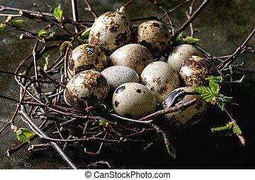 ウズラ, 卵, イースター, 巣