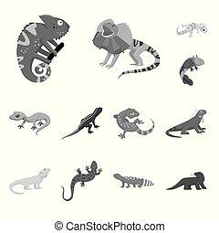 エキゾチック, セット, シンボル, web., イラスト, ベクトル, 野生, icon., 動物群, 株
