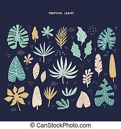 エキゾチック, トロピカル, 葉, 手, 引かれる, イラスト