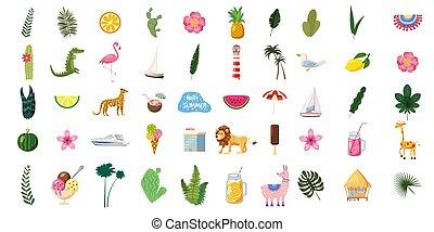 エキゾチック, 夏, セット, poster., かわいい, 明るい, やし, 最新流行である, 植物, design., 飲み物, アイコン, 隔離された, 花, 動物, コレクション, 食物, ボート, 葉, flamingos., ベクトル, 成果