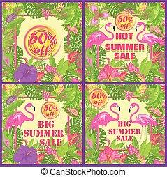 エキゾチック, 夏, 花, カラフルである, ラベル, セール, 変化, 葉, トロピカル, 熱い ピンク, 太陽, 花, フラミンゴ