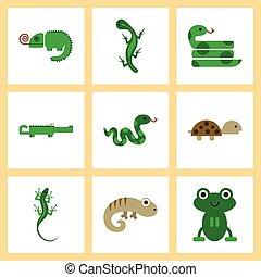 エキゾチック, 平ら, アセンプリ, アイコン, は虫類, 野生