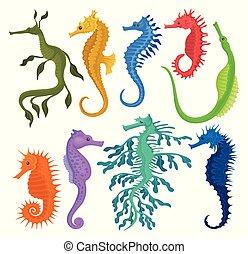 エキゾチック, 平ら, 別, セット, 動物, 種, ベクトル, 海, 小さい, fishes., 海洋, seahorses.