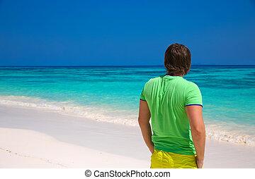 エキゾチック, 浜, 生活, よい, 幸せ, 島, 旅行, 背中, 楽しむ, トロピカル, バックグラウンド。, 人, 海岸, 人, 見る, concept., 光景