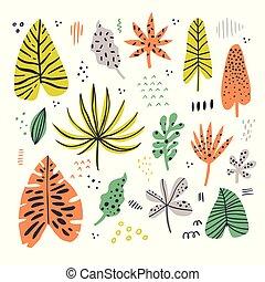 エキゾチック, 葉, 手, 引かれる, 平ら, イラスト, セット