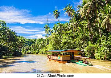 エキゾチック, bohol, ジャングル, 巡航, loboc, 川, 観光客, ボート