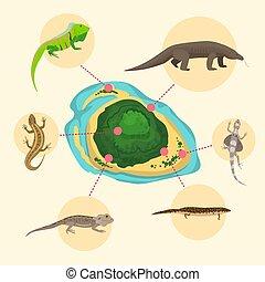 エキゾチック, island., モニター, ペット, nature., アメリカ人, は虫類, を除けば, 自然,...